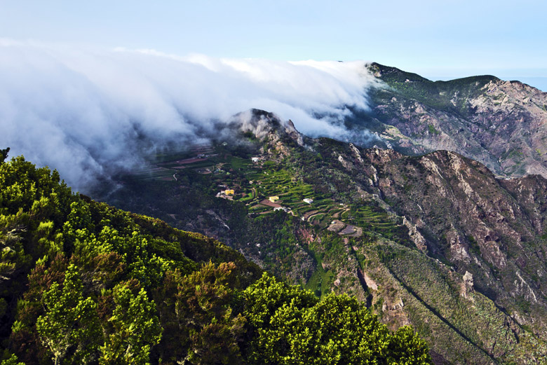 Mist coming through mountains down to the valley of Anaga massif, the biosphere reserve in Tenerife