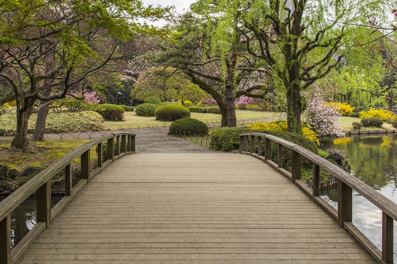 Wooden bridge in Shinjuku Gyoen National Garden in Tokyo