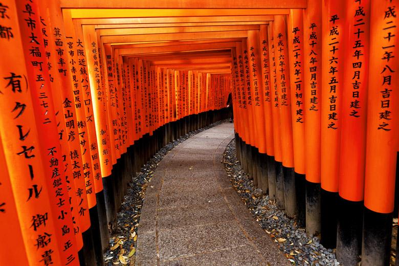 Pathway with Toriis to Fushimi Inari-taisha Shrine